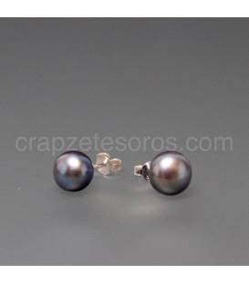 Perla negra cultivada 8mm en pendientes de plata de ley