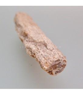 Xilópalo o madera fósil de Madagascar