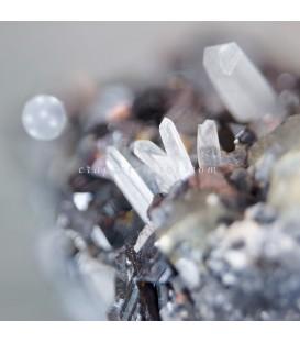 Paragénesis de Galena cristalizada, cuarzo de Madan Bulgaria