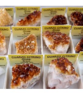 Drusas de Cuarzo citrino para colección o terapéutica en cajitas 4X4