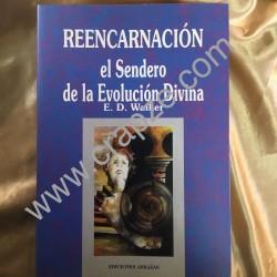 Reencarnación, el sendero de la evolución divina